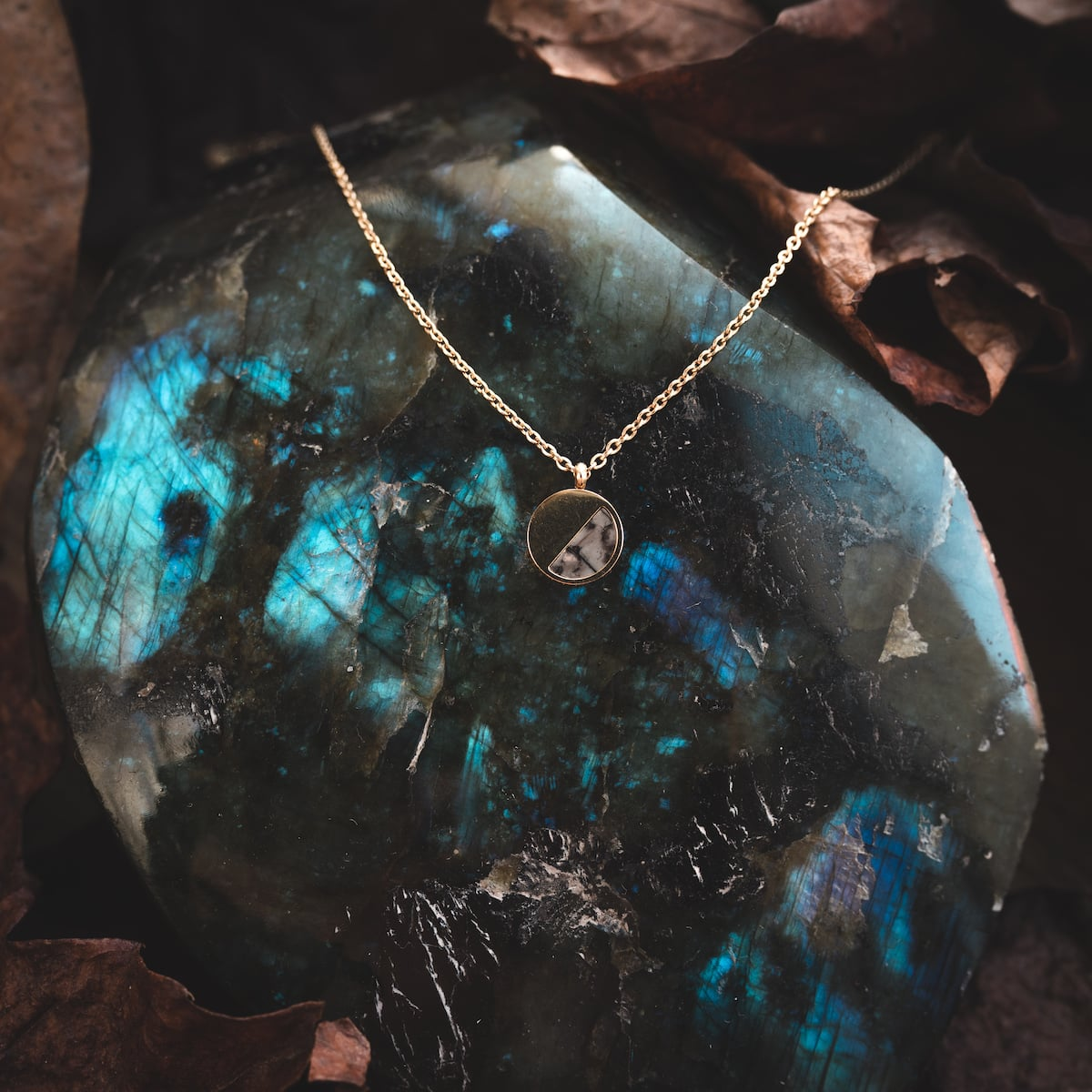 Muse Necklace $75