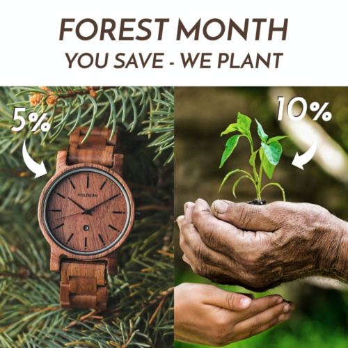 Forest Month at Holzkern - you save, we plant!