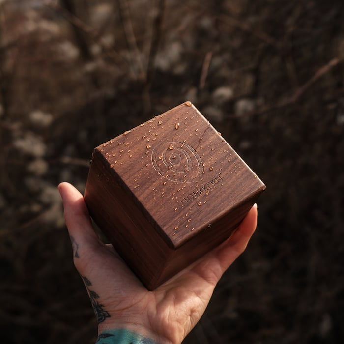 Walnut box by Holzkern