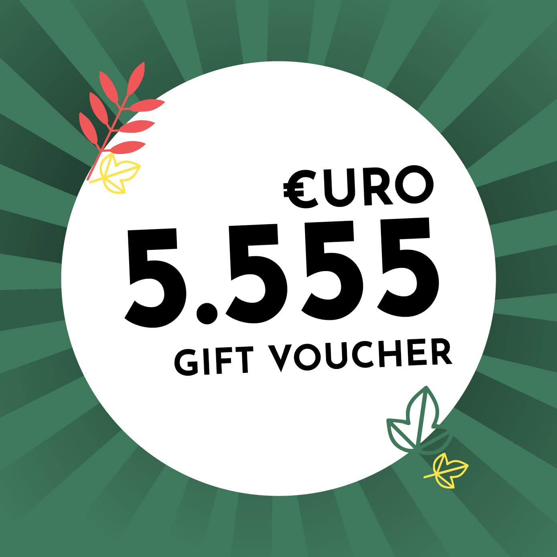 5.555€ Holzkern Gift Voucher